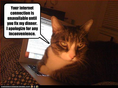 Your internet connection is unavailable until you fix my ...