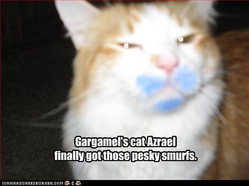 Gargamel S Cat Azrael Finally Got Those Pesky Smurfs