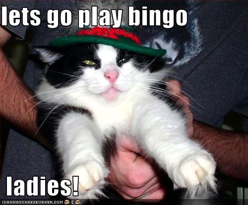 Casino spiele slots frei rj berger