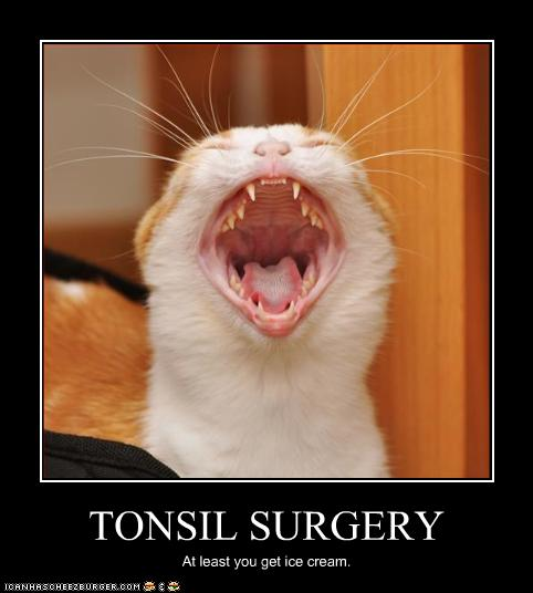 TONSIL SURGERY - Cheezburger - Funny Memes | Funny Pictures