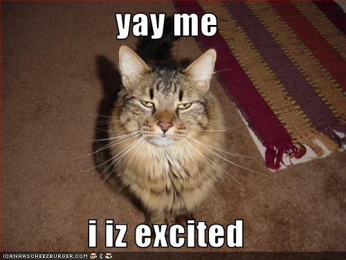 Yay Me I Iz Excited Cheezburger Funny Memes Funny Pictures Fastest way to caption a meme. yay me i iz excited cheezburger