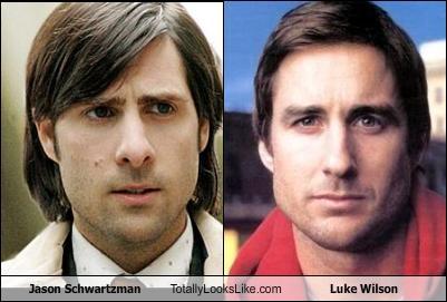 jason schwartzman totally looks like luke wilson