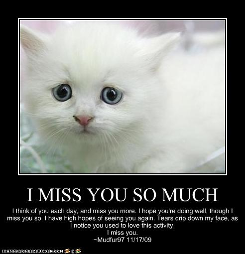 I MISS YOU SO MUCH - Cheezburger - Funny Memes | Funny ...  I MISS YOU SO M...