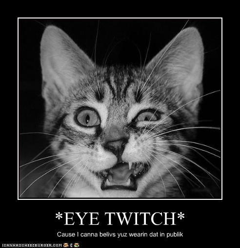*EYE TWITCH* - Cheezburger - Funny Memes