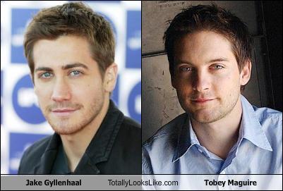 does tobey maguire look like jake gyllenhaal dating