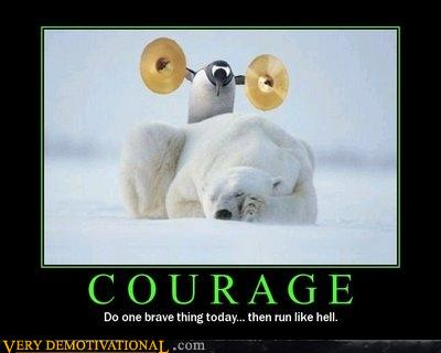 Image result for penguin polar bear cymbals