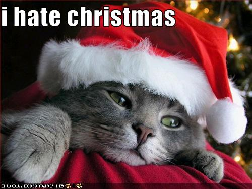I Hate Christmas.I Hate Christmas Cheezburger Funny Memes Funny Pictures