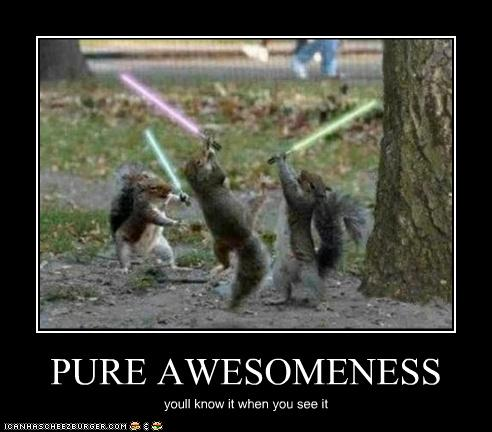 Pure Awesomeness Cheezburger Funny Memes Funny Pictures