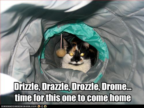 Drizzle Drazzle Drozzle Drome Time For This One To Come Home