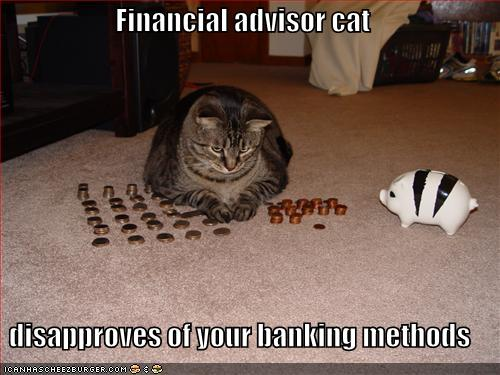 Financial Advisor Cat Disapproves Of Your Banking Methods