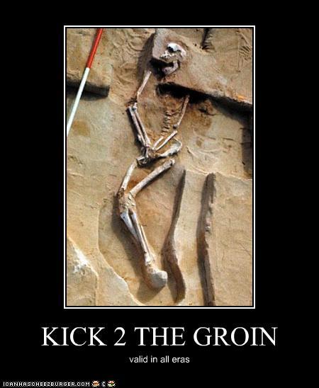 KICK 2 THE GROIN - Cheezburger - Funny Memes
