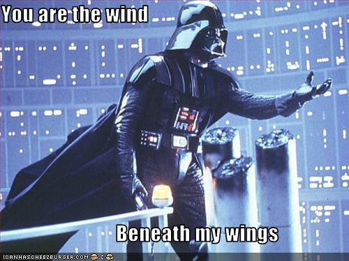 You Are The Wind Beneath My Wings Pop Culture Funny