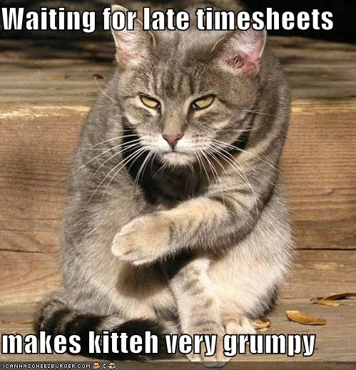 Waiting For Late Timesheets Makes Kitteh Very Grumpy