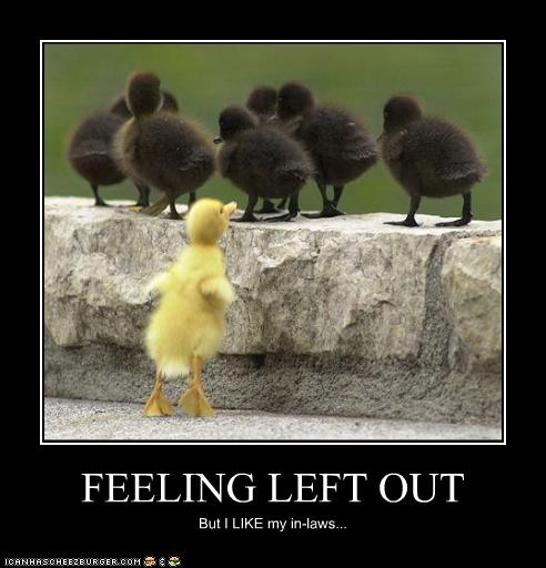 FEELING LEFT OUT - Cheezburger - Funny Memes   Funny Pictures
