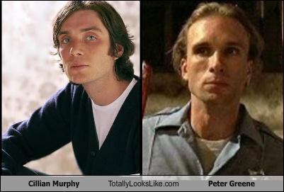 Cillian Murphy Totally Looks Like Peter Greene - Totally ...