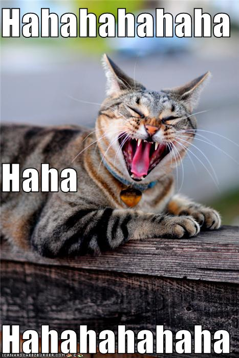 Free Dating Sites >> Hahahahahaha Haha Hahahahahaha - Cheezburger - Funny Memes ...