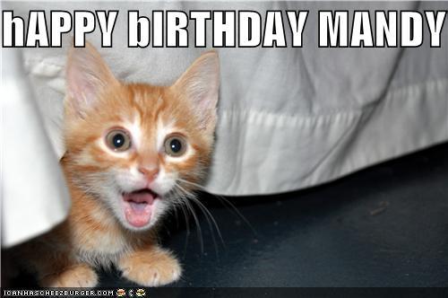 happy birthday mandy cheezburger funny memes funny