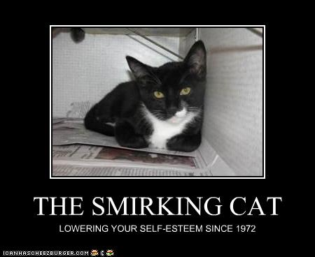 THE SMIRKING CAT - Cheezburger - Funny Memes | Funny Pictures