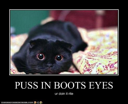 Puss In Boots Eyes Cheezburger Funny Memes Funny