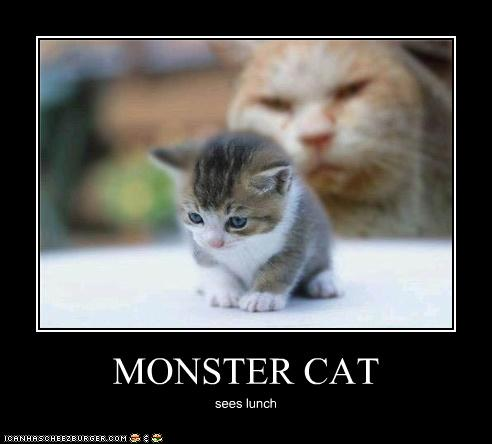 Monster Cat Cheezburger Funny Memes Funny Pictures