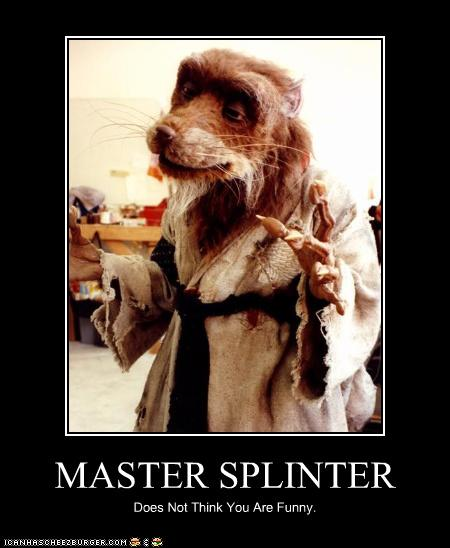 splinter Memes & GIFs - Imgflip   Fuckery Memes Splinter