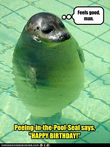 peeing in the pool seal says quothappy birthday