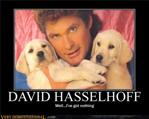 David hasselhoff with puppies