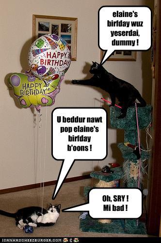 Happy Belated Birthday Elaine Cheezburger Funny