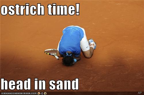 ostrich time! head in sand - Cheezburger - Funny Memes ... - photo#20