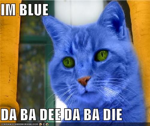 Im Blue Da Ba Dee Da Ba Die Cheezburger Funny Memes