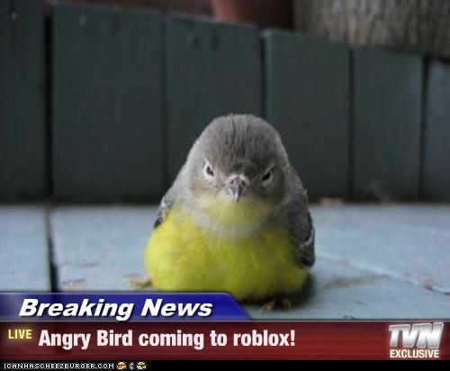 Breaking News Angry Bird Coming To Roblox Cheezburger Funny