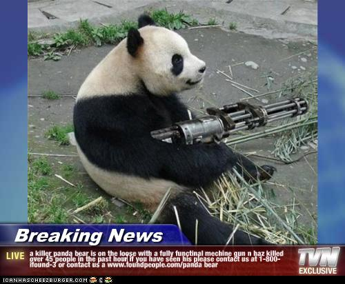 Breaking News - a killer panda bear is on the loose with a ...