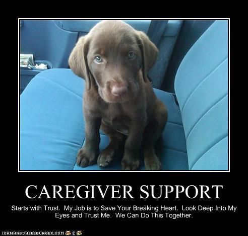 Caregiver Support Cheezburger Funny Memes Funny Pictures