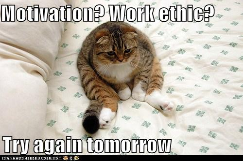 Motivation Work Ethic Try Again Tomorrow Cheezburger