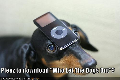 Pleez To Download Who Let The Dogs Out Cheezburger Funny Memes Funny Pictures