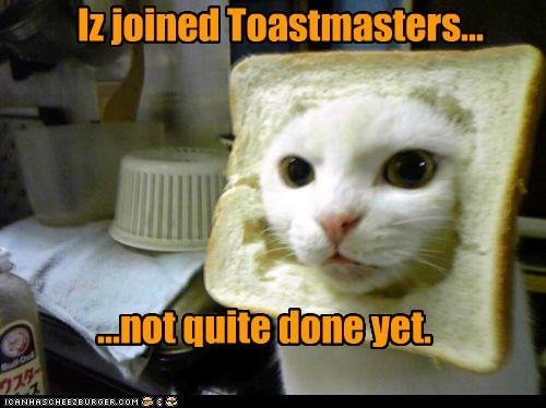 Iz joined Toastmasters... - I Can Has Cheezburger?