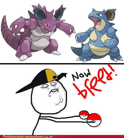 Pokémemes - Page 226 - Pokemon Memes - Pokémon, Pokémon GO ...