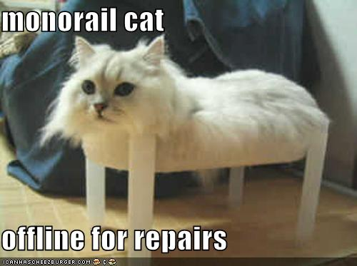 Monorail Cat Offline For Repairs Cheezburger Funny