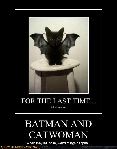 batman and catwoman - very demotivational