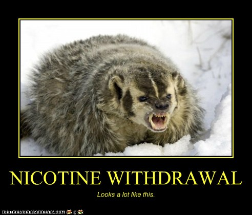 Pin on Smoking Cessation Products |Smoking Withdrawal Meme