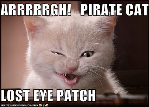 Arrrrrgh Pirate Cat Lost Eye Patch Cheezburger Funny