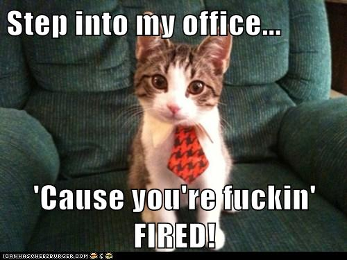 step into my office cause youre fuckin fired