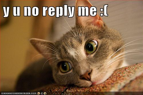 Y U No Reply Me Lolcats Lol Cat Memes Funny
