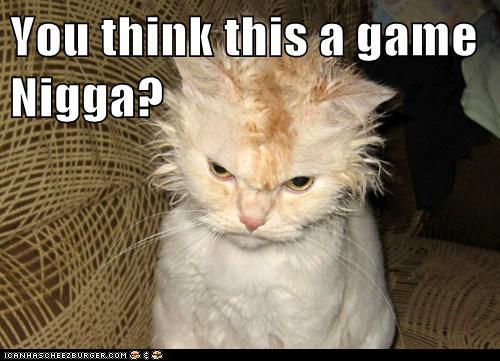 You Think This A Game Nigga Lolcats Lol Cat Memes
