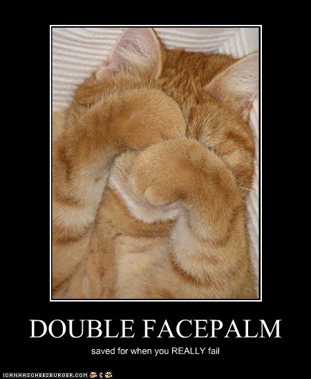 Double Facepalm Lolcats Lol Cat Memes Funny Cats
