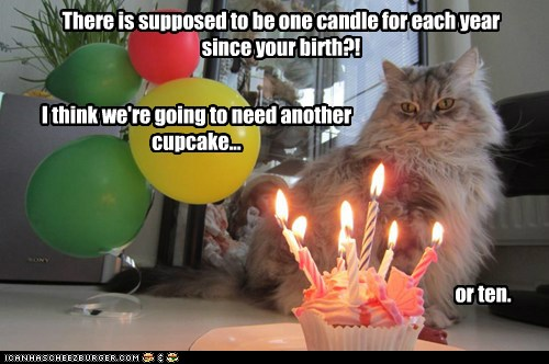 You Re How Old Happy Birthday Sis Lolcats Lol