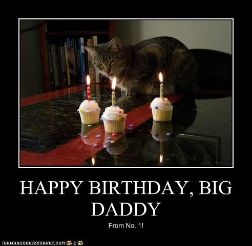 happy birthday big daddy cheezburger funny memes