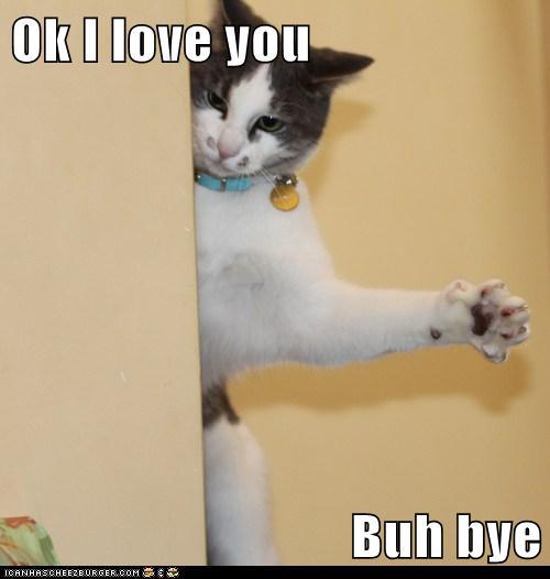 Ok I Love You Buh Bye Lolcats Lol Cat Memes Funny
