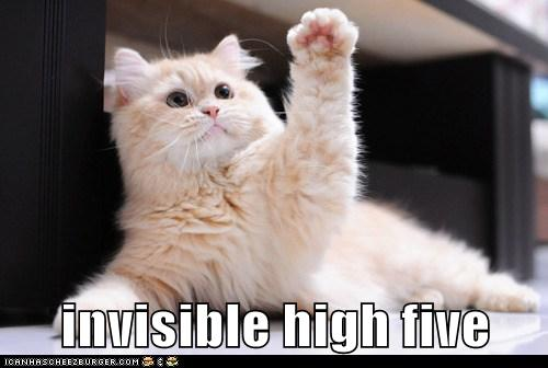 Invisible High Five Lolcats Lol Cat Memes Funny