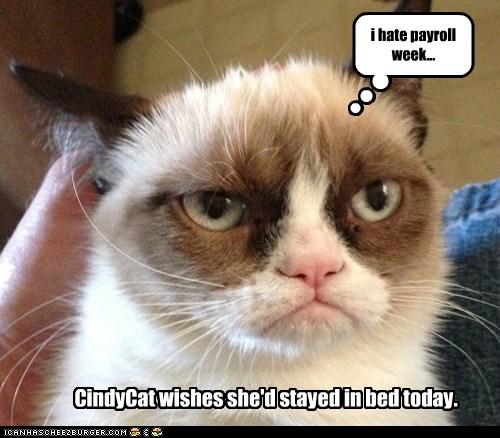 I Hate Payroll Week... - Cheezburger - Funny Memes